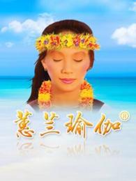蕙兰瑜伽冥想与减压