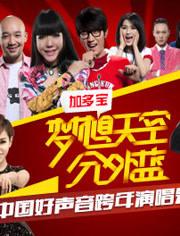 浙江衛視2013跨年晚會