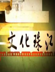 文化珠江 2018年